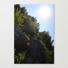 Arch Rock Canvas Print