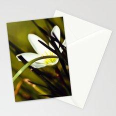 Shyness Stationery Cards
