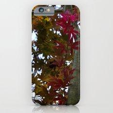 Japanese Maple Tree iPhone 6s Slim Case