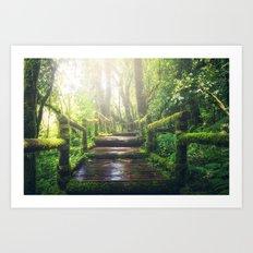 Green Jungle Forest Path Art Print