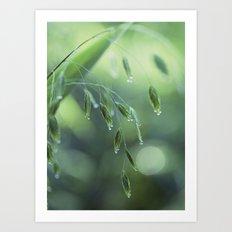 dew drop morning Art Print