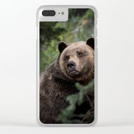 Yogi Bear Clear iPhone Case