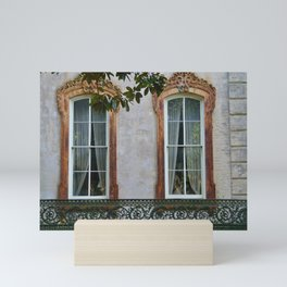 Savannah Windows Mini Art Print