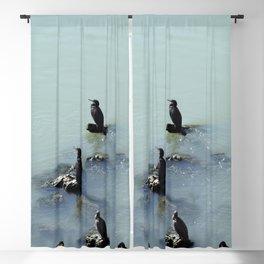 Cormorants Birds on the River Blackout Curtain