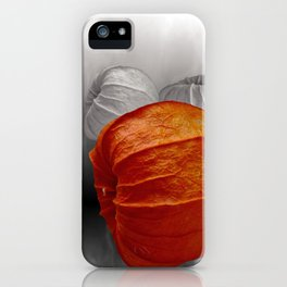 physalis - colorkey iPhone Case