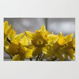 Daffodils Image, from my floral photography collection Rug