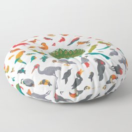 Aerial Spectrum : pattern Floor Pillow