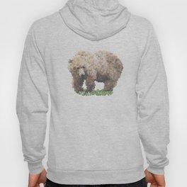 Penrose Tiling Bear Hoody