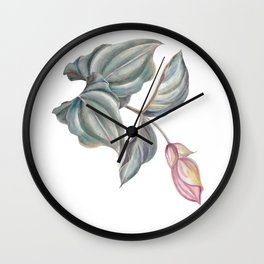 branch of pink Medinilla Magnifica Wall Clock