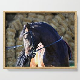 hay bale horse Serving Tray