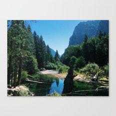 Zumwalt Meadow Trail Canvas Print