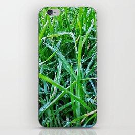 Dewy Grass iPhone Skin