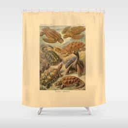 Chelonia Shower Curtain