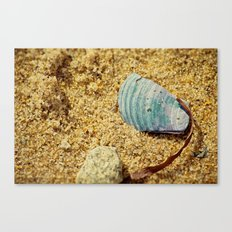 Sand and Shell Canvas Print