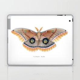 Polyphemus Moth Laptop & iPad Skin