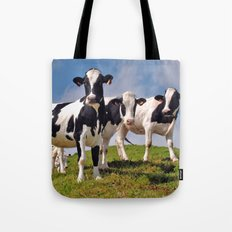 Young Holstein cows Tote Bag