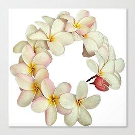 Plumeria Tropical Flower Garland Canvas Print