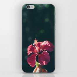 Hibiscus in Mexico iPhone Skin