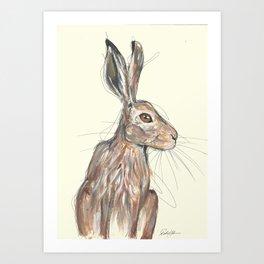 British Hare Art Print