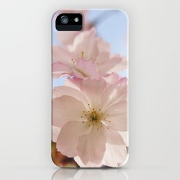 Sping blossom iPhone Case