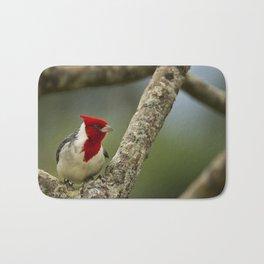 Red Crested Cardinal Bath Mat