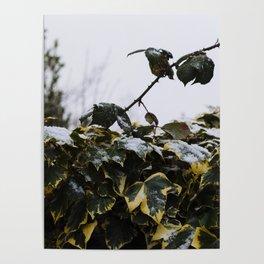 Neve em Londres - 7 Poster