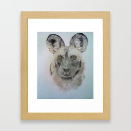 Wild African dog Framed Art Print