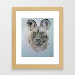 Wild African dog Framed Art Print