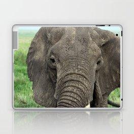 Eleface Laptop & iPad Skin