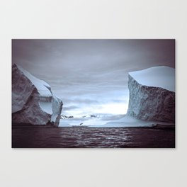 Icy scale Canvas Print