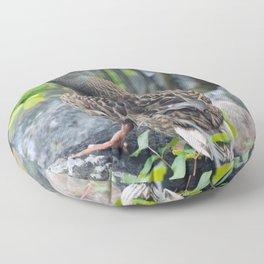 Duck on the Rocks (Common Mallard) Floor Pillow