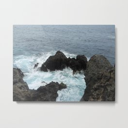 wild Tenerife Metal Print