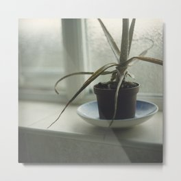 Window sill Metal Print