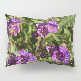 Notch-Leaved Phacelia - Desert Wildflower Pillow Sham
