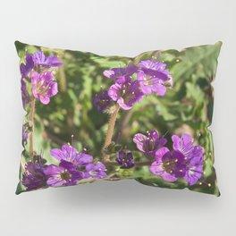 Notch-Leaved Phacelia - Desert Wildflower Pillow Sham