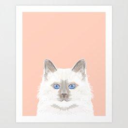 Roxie - White Birman Cat, Cute Kitten, White Cat Blue Eyes, Cell Phone Case, Cat Lady Gift Art Print