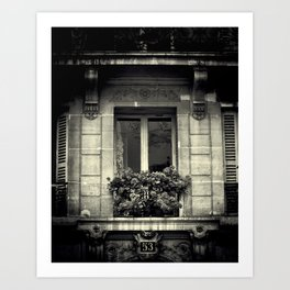 French Window  Art Print
