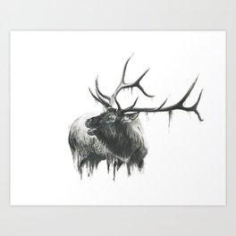 Bugle of an Elk Art Print
