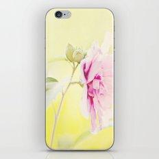 pink flower iPhone & iPod Skin