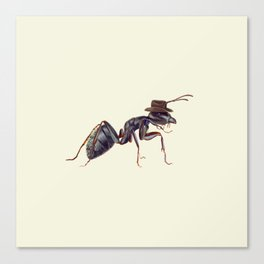 Ant with a Cowboy Hat Canvas Print