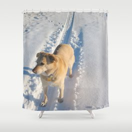 Dogs | Dog | Waiting Dog | Golden Lab Shower Curtain