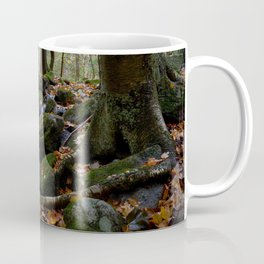 Autumn Forest Stream IV Coffee Mug