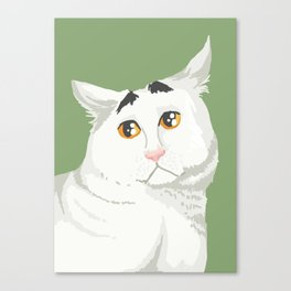 Sam the Cat with Eyebrows Canvas Print