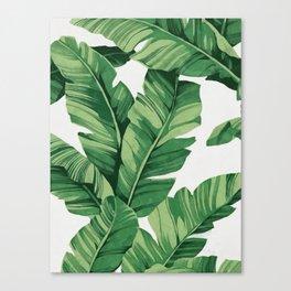 Tropical banana leaves Canvas Print