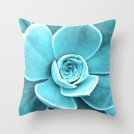 Succulent Southwest Throw Pillow