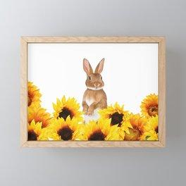 Sunflower Rabbit Framed Mini Art Print