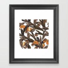 Spice Framed Art Print