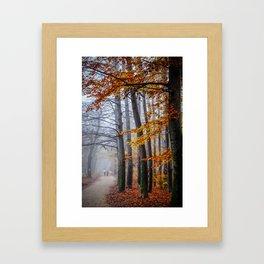 The last stroll in November Framed Art Print