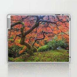 Japanese Maple Tree Laptop & iPad Skin