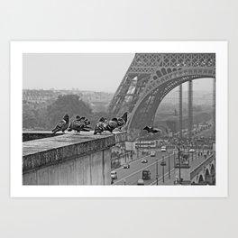 pigeons parisien Art Print